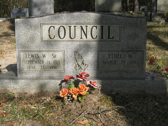 LewisCouncil